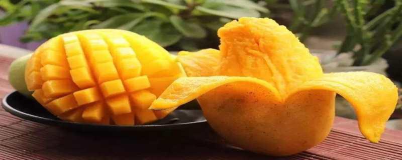 芒果怎么催熟